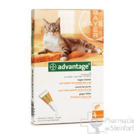 anti puce advantage