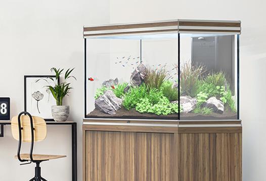 aquarium aquatlantis