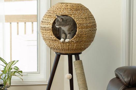 arbre chat design