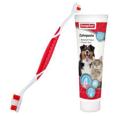 brosse a dent pour chien