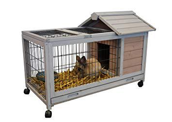 cage a lapin interieur