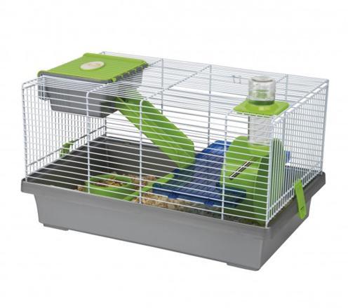 cage hamster nain