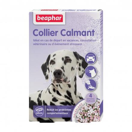 collier anti stress chien