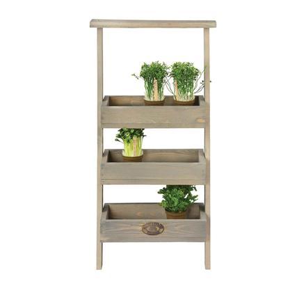 étagère à plantes