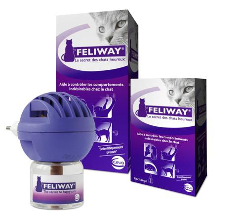 feliway chat pipi