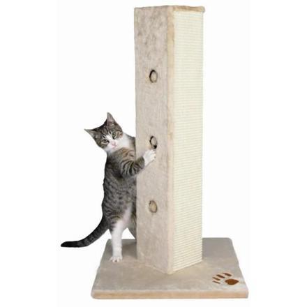 griffoir pour chat