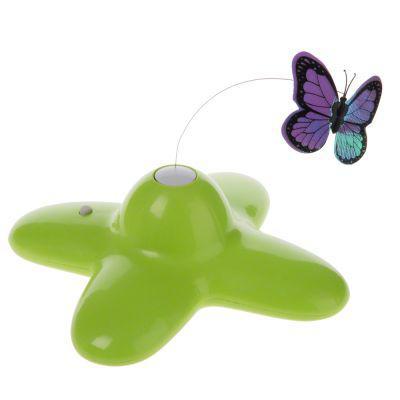 jouet chat papillon