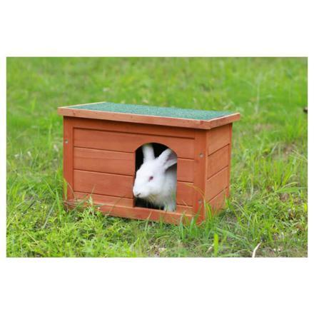 maison lapin