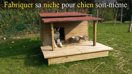 niche pour husky