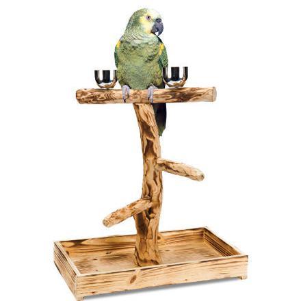 perchoir oiseau