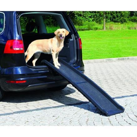 rampe chien voiture