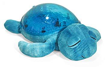 tranquil turtle